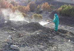 خطر بروز سالک در مناطق زلزله زده/تکذیب شیوع بیماری واگیر