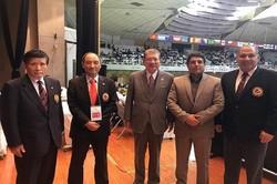 زيادة التعاون بين إيران واليابان في مجال الرياضة