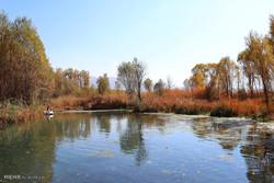 طبیعت پاییزی روستای دشت ارژن