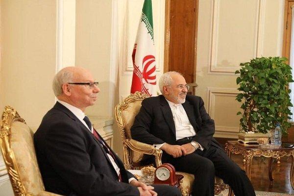 FM Zarif receives EP's Lewandowski in Tehran