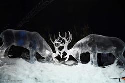اسکاٹ لینڈ میں یخی اور برفی مجسمے