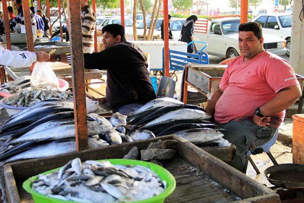 عرضه مستقیم ماهی در بندرعباس آغاز شد