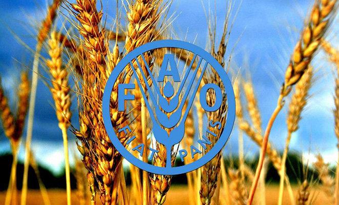 مقاومت میکروبی امنیت غذایی ومعیشت میلیونها کشاورز راتهدید می کند
