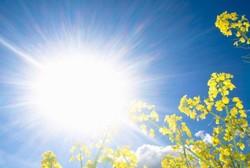 تاثیر نور خورشید بر پیشگیری از ابتلا به دیابت و چاقی