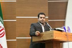 افزایش تولیدات هنری استان بوشهر در سال رونق تولید