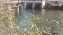 زاینده رود تا اوایل بهمن برای کشت پاییزه کشاورزان باز می شود
