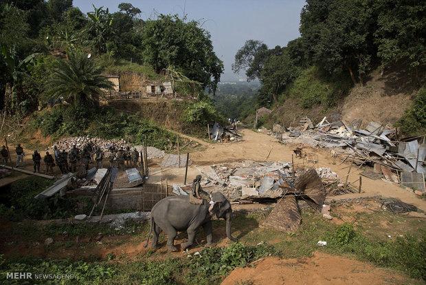 استفاده از فیل برای تخریب خانه های غیرمجاز