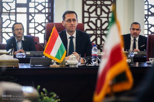 دیدار وزیر امور اقتصاد ایران با وزیر اقتصاد مجارستان