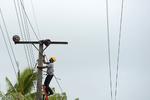 طوفان مازندران را درنوردید/ آسیب به شبکه برق
