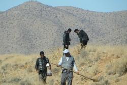 دومین مرحله عملیات احیای مناطق آسیب دیده جنگل های پاسارگادآغازشد