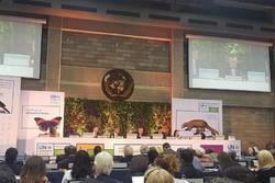 مجمع محیط زیست ملل متحد - کراپشده