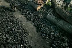 کشف ۲ تن ذغال بلوط در کرمانشاه