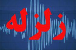کاهش۹۰درصدی خسارتهای زلزله درپایتخت بااجرای طرح جامع مدیریت بحران