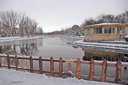 تداوم بارشهای پراکنده در اردبیل/ارتفاع برف در نیر به۴۰ سانت رسید