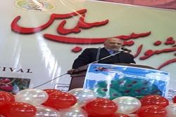 ۵۰ هزارتن سیب از آذربایجان غربی به خارج از کشور صادر شد