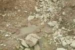 چشمه باغات انجیر - کراپشده