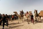 اولین جشنواره بازی های بومی ومحلی و شتردوانی در شهرستان خوسف
