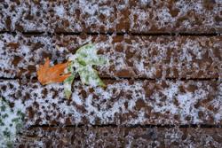 بەفر و باران بەڕێوەیە/ دابەزینی ١٠ پلەی گەرمای هەوای کوردستان