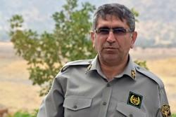 عاملان حمله به محیط بانان لرستانی دستگیر شدند