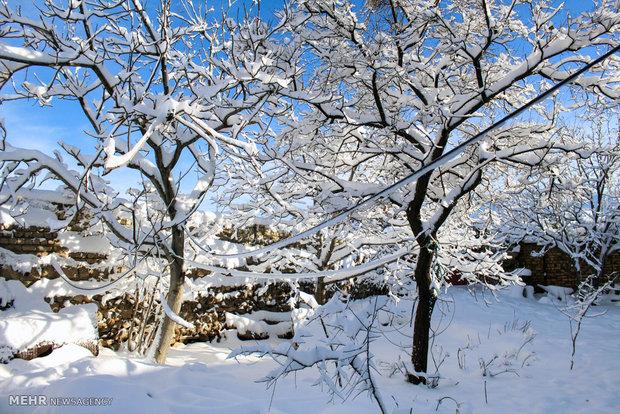 الهطولات الثلجية الأولى في زنجان غرب البلاد