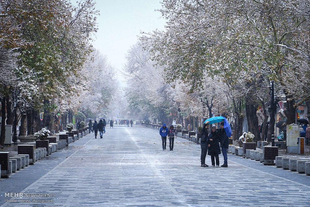 اعلام جزئیات بارشها؛ ردپای برف روی شانههای شهر/ لرستان «سفید» پوشید