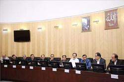 فراکسیون نمایندگان ولایی