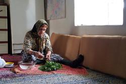 İran'ın gündelik yaşamından renkli yansımalar