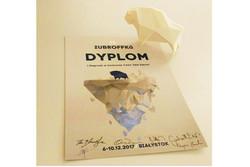 «روتوش» و «نگاه» از جشنواره زوبروفکا لهستان جایزه گرفتند