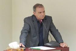 علی صادقی طاری