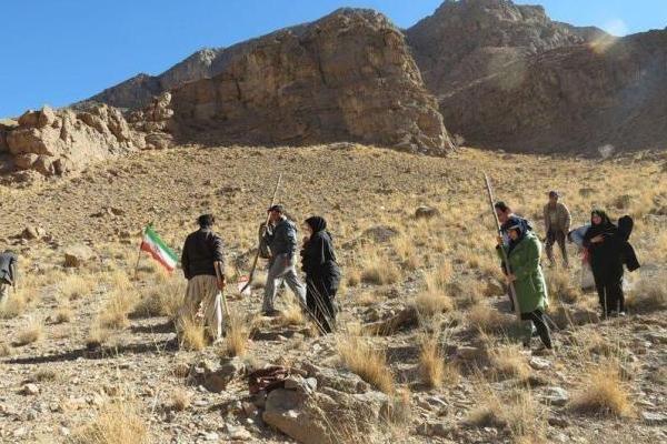 اجرای طرح ملی جنگلانه در مراتع شهرستان مهریز