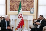 Iran hails Iraq on victory against terrorism