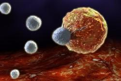پروتئین ضدسرطان