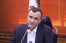 تعداد کارتهای بازرگانی استان بوشهر نصف شد