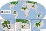 حجم طبیعت کره زمین ۱۰ درصد کاهش یافت