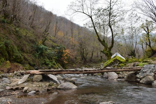 طبیعت شهرستان مرزی آستارا در آخرین روزهای فصل پاییز