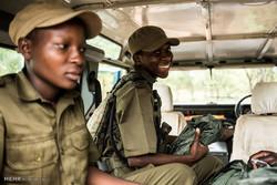 مبارزه زنان با شکار غیرقانونی در زیمبابوه
