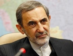 Velayati denounces Haley's allegations as ridiculous