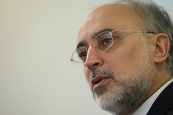 Only IAEA can judge Iran's compliance with JCPOA: Salehi
