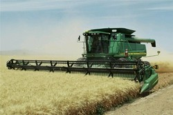 راه نجات کشاورزی کاهش ضایعات و افزایش فناوری است