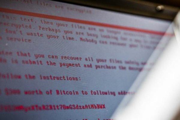 کۆریای باکوور بەرپرسی هێرشی ئینترنتی واناکرایە