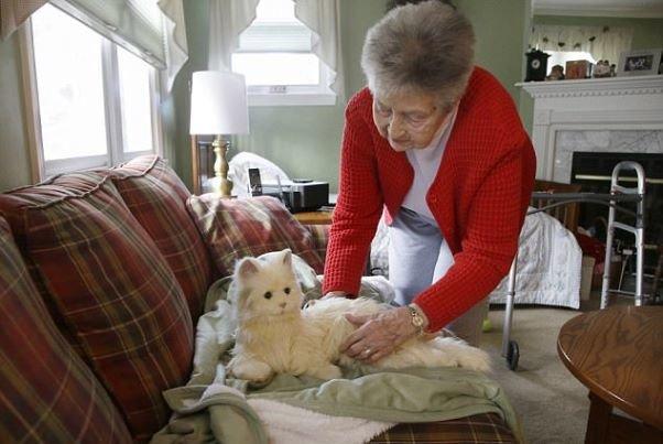 این گربه رباتیک داروهای صاحب سالمندش را یادآوری می کند
