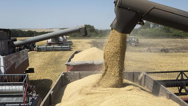 Uzbekistan eyes upping oil, wheat exports to Iran