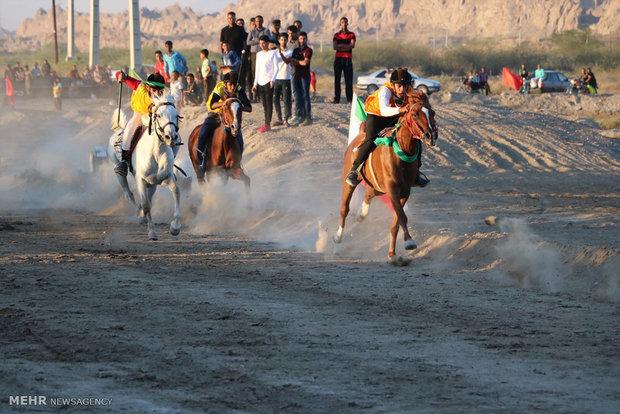 مسابقة ركوب الخيل في ميناب