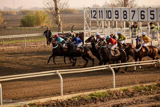 Horse-riding competitions in Gonbad