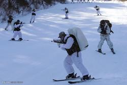 جاپان اور جنوبی کوریا کی سرمائی فوجی مشقیں