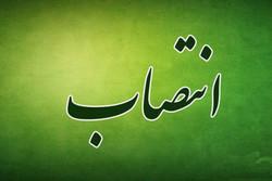 سرپرست جدید دانشگاه علوم پزشکی البرز منصوب شد
