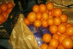 ۲۰۰۰ تن میوه شب عید در آذربایجان غربی توزیع شد