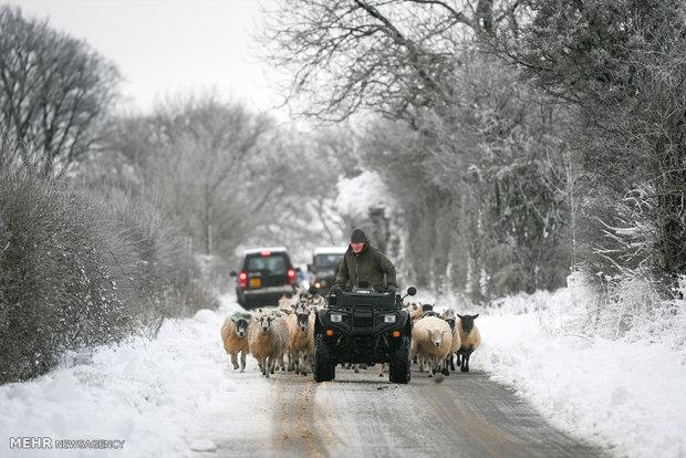 برف و سرما در انگلیس