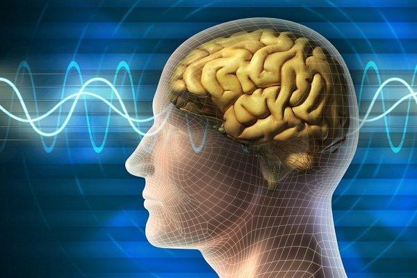 دستگاه ثبت دقیق امواج مغزی در دانشگاه علوم پزشکی مشهد رونمایی شد