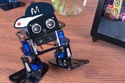 ربات 50 دلاری